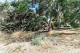 3948 Skelton Canyon Circle - Photo 6