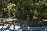 3948 Skelton Canyon Circle - Photo 8