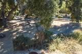 3948 Skelton Canyon Circle - Photo 9