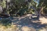 3948 Skelton Canyon Circle - Photo 10