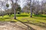 4359 Alamo Creek Road - Photo 48