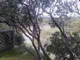 17060 Elder Creek Circle - Photo 2
