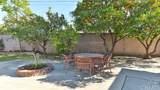 10528 El Braso Drive - Photo 8