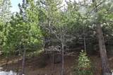 0 Spruce - Photo 10