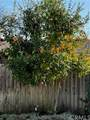 1137 Walnut Glen Court - Photo 20