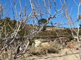 59630 Rincon Ridge - Photo 4