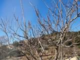 59630 Rincon Ridge - Photo 8