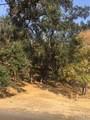 19956 Mountain Meadow - Photo 2
