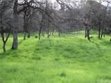 498 Lodgeview Drive - Photo 4