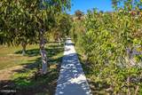710 Mesa Drive - Photo 57