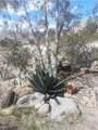 8223 Desert Sands Road - Photo 13