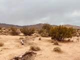 59189 Los Coyotes/Busby - Photo 11