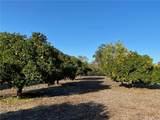 25722 Orchard Rim Ln - Photo 22