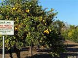 25722 Orchard Rim Ln - Photo 27