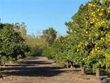 25722 Orchard Rim Ln - Photo 28