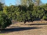 25722 Orchard Rim Ln - Photo 29
