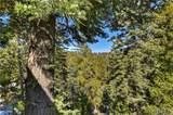 26241 Boulder Lane - Photo 4