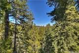26241 Boulder Lane - Photo 5