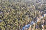 1005 Wilderness Drive - Photo 5