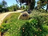 4991 Lamia Way - Photo 52