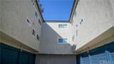 33741 Olinda Drive - Photo 12