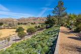 14902 Live Oak Springs Canyon Road - Photo 54
