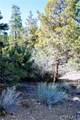 1150 Green Mountain Drive - Photo 13