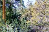 1150 Green Mountain Drive - Photo 7