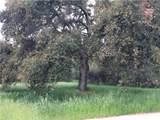 43895 De Luz Road - Photo 70