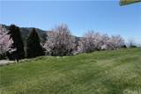 38735 Wild Lilac - Photo 15