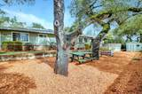 554 Hacienda Drive - Photo 4