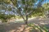 2391 Mantelli Drive - Photo 16