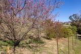 6027 Wheeler Canyon Road - Photo 38