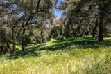 17825 Bear Valley Lane - Photo 54
