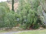 28402 Bouquet Canyon Road - Photo 6