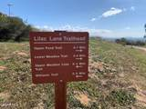 7696 Lilac Lane - Photo 59