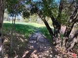 1 Old Topanga Canyon - Photo 13