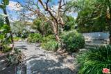 1323 Olive Drive - Photo 10