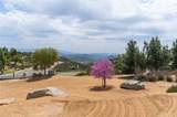 31470 Sierra Verde Road - Photo 7