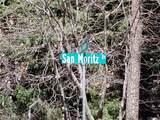 0 San Moritz Drive - Photo 31