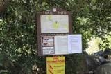 2899 Matilija Canyon Road - Photo 22