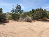 31408 Angeles Forest Highway - Photo 10