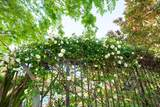 5094 Le Miccine Terrace - Photo 30