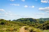 29305 Modjeska Canyon Road - Photo 74