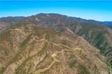 29305 Modjeska Canyon Road - Photo 75