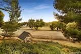28316 Oak Spring Canyon Road - Photo 21