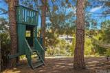 27341 Lost Trail Drive - Photo 52
