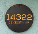 14322 Cerecita Drive - Photo 30