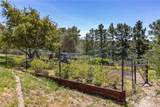 495 Squire Canyon Road - Photo 49