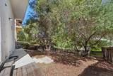 3554 Gladiola Drive - Photo 44